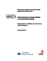 Mactaquac Aquatic Ecosystem Study Report Series 2015-016, Fish passage in large rivers: a literature review