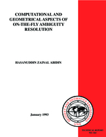 Computational and geometrical aspects of on-the-fly ambiguity resolution