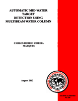 Automatic mid-water target detection using multibeam water column